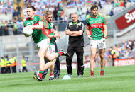 Mayo management team step down with immediate effect