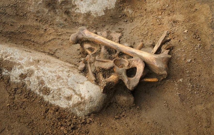 400-year-old 'pirate' skeleton found buried under school