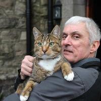Cat praised for saving church from ruin in blaze