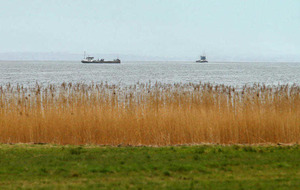 Body at centre of Lough Neagh probe gave training to planning officials