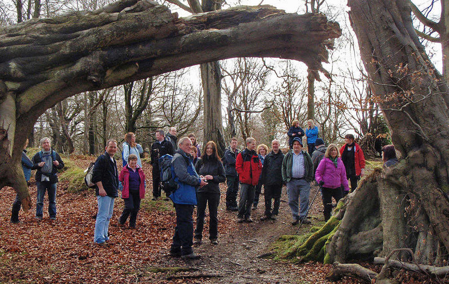 Cairn Wood: Battle to save amenity from being sold off