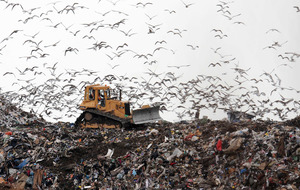 Household waste going to landfill hits dramatic low