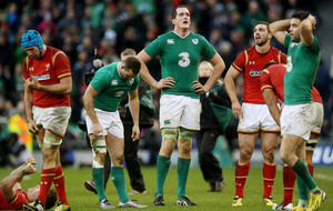 Rugby fans try and fail to see Ireland match on RTE