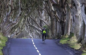 White lines under Dark Hedges will be 'burned off'