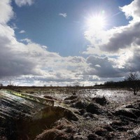 Lough Neagh fishermen voice concern over netting ban