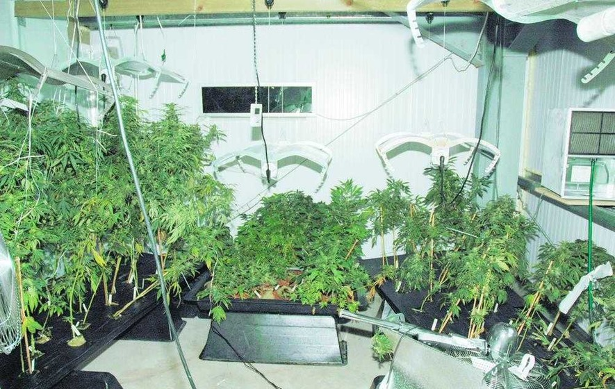 Man arrested after cannabis found in Co Derry