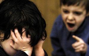 'Let children fight back against playground bullies'