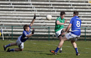 In-form Ulster rivals clash in Brewster Park derby battle