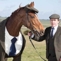Cheltenham: Veteran racehorse Morestead dons tweed 'suit' with Tony McCoy