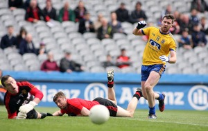 Down flounder as Roscommon revel in their top flight status