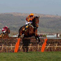Cheltenham Gold Cup favourite Thistlecrack ruled out for rest of season