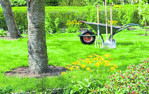 Pest control - how to protect the garden from unwelcome visitors