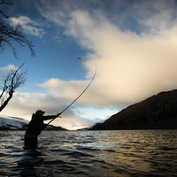 The Reel Thing: Increase in salmon could be on the cards
