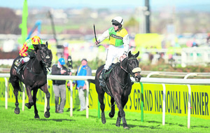 Pinstickers' Guide to the Crabbie's Grand National