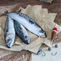 Let fish make a splash in your healthy eating efforts