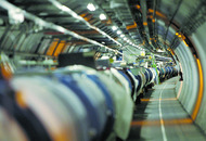Large Hadron Collider 'temporarily immobilised by weasel'