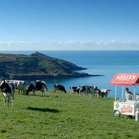 Ice-cream company to air first Cornish language TV ad