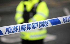 Petrol bomb thrown at police vehicle in Carrickfergus