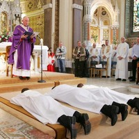 Does the Irish Catholic Church have a contingency to combat vocational decline?