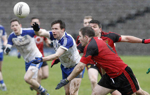 Monaghan-Down script has yet to be written: Malachy O'Rourke