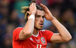 Chis Coleman says Wales loss to Sweden is a 'slap in the face'