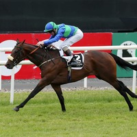 Stellar Mass storms to victory in the Ulster Derby at Down Royal