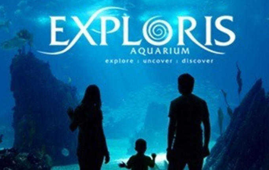Portaferry Aquarium To Re Open On August 15 After Being