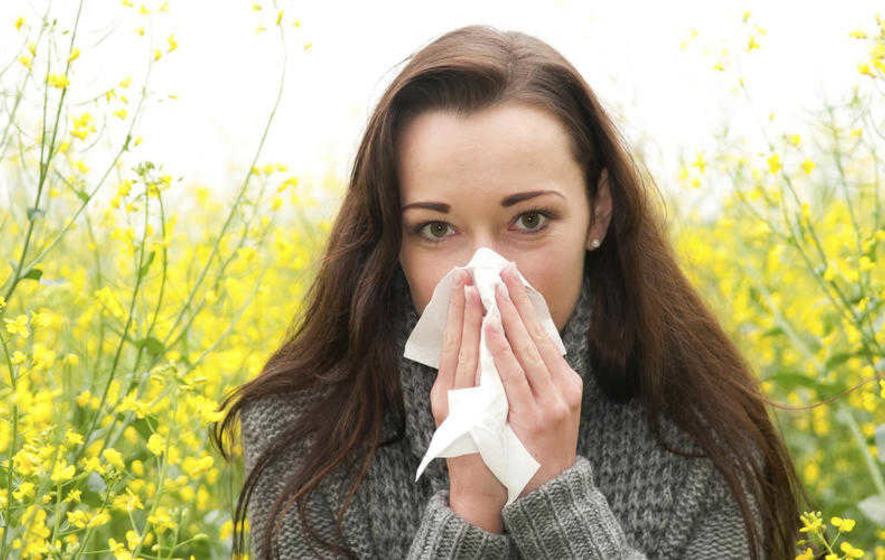 Netting a Bargain: Cheap hay fever remedies not to be sneezed at