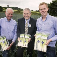 Leeks arrive early in Tesco stores this summer from north Down