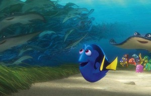 Finding Dory a memorable journey of self-fishcovery