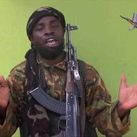 Boko Haram leader Abubakar Shekau 'killed while praying'
