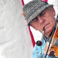 Bluegrass Music Festival back at Ulster American Folk Park