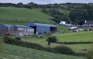 Popular GAA man killed in South Armagh farm accident