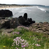 Portstewart Strand named best Blue Flag Beach in UK