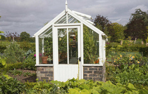 Gardening: 'Spring clean' the greenhouse for winter