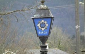 Woman in her twenties dies in Limerick house fire