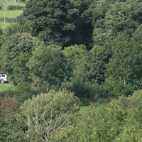 Farmer in new Arlene search: I found something like a grave