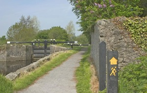 Follow me up to the Carlow Walking Festival