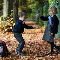 Co Tyrone primary school bans conkers over 'nut allergy' fears for pupils