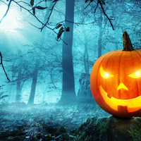 What's On: Spooktacular happenings all over the north