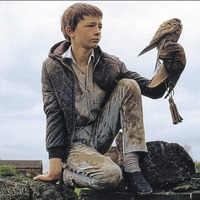 Cult Movie: Ken Loach's Kes one of the greatest British films ever made