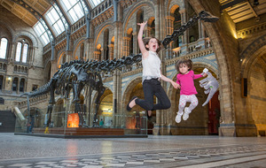 Video: Dippy the dinosaur to take up residence in Belfast