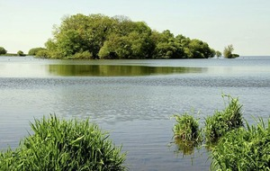 High Court bid to force a halt to Lough Neagh sand dredging fails