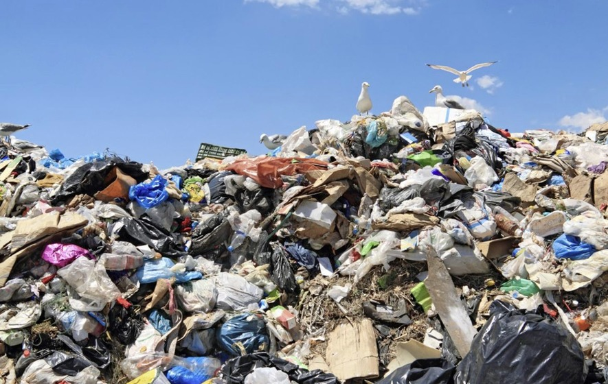 Waste 'exports' contribute to lowest landfill rate in 10 years