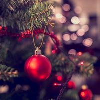 Enniskillen's main Christmas tree damaged by vandals