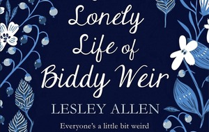 Bangor woman's novel The Lonely Life of Biddy Weir tackles bullying and self-worth