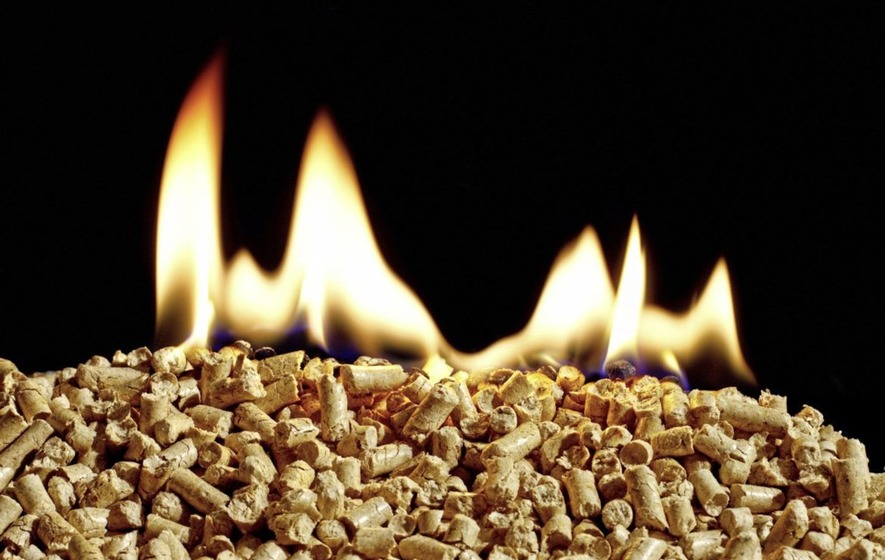 RHI funding flaws uncovered in five minutes, says whistleblower