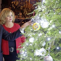 Pips unveils its Belfast 'Tree of Lights' to remember those who have died by suicide