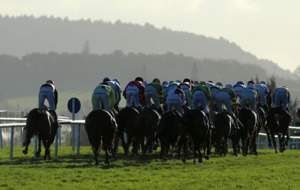 Vroum Vroum Mag a Christmas cracker as Willie Mullins dominates at Leopardstown