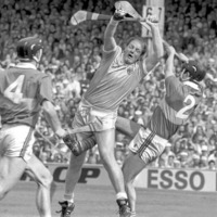State papers: Ambassador 'thrilled' by hurling final